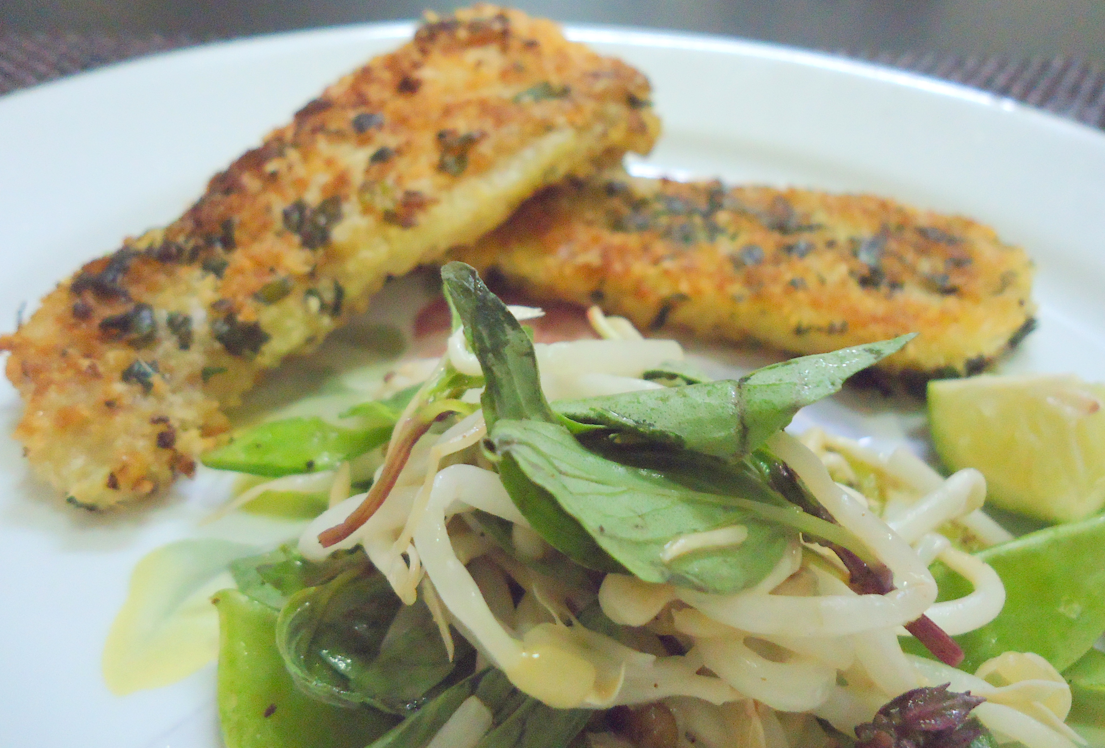 coconut crusted fish global table adventure coconut crusted salmon ...